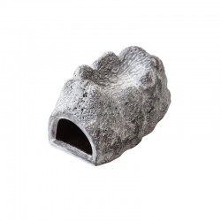 Gruta Húmida - Wet Rock