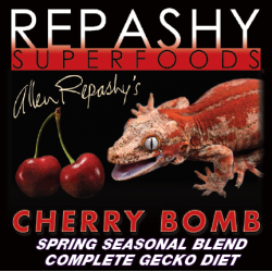 Crested Gecko MRP Cherry Bomb