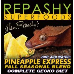 Crested Gecko MRP Pineapple...
